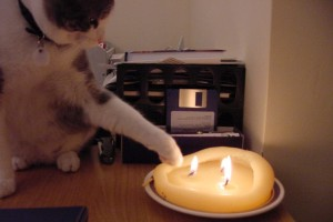 Chet and the Candle